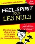FEEL-SPIRIT pour les nuls