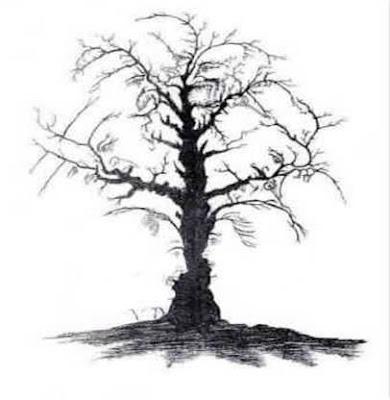 ¿Puedes ver las diez caras en el árbol?