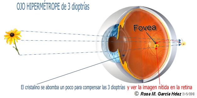 Business Objects Xi Tutorial Pdf - visionsutorrent