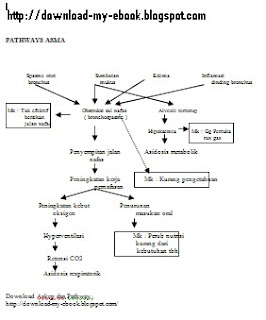 Download ebook pathway asthma