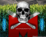 Monsanto.. GMO-GGO