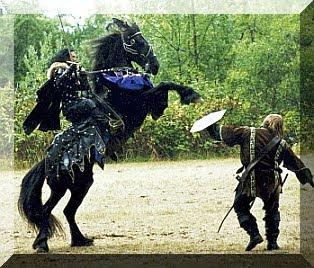 kuda tempur, kuda bagus, kuda tentara, tentara berkuda