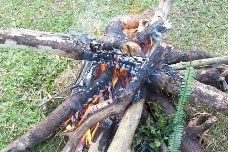 reiki xamanico no sitio com fogueira