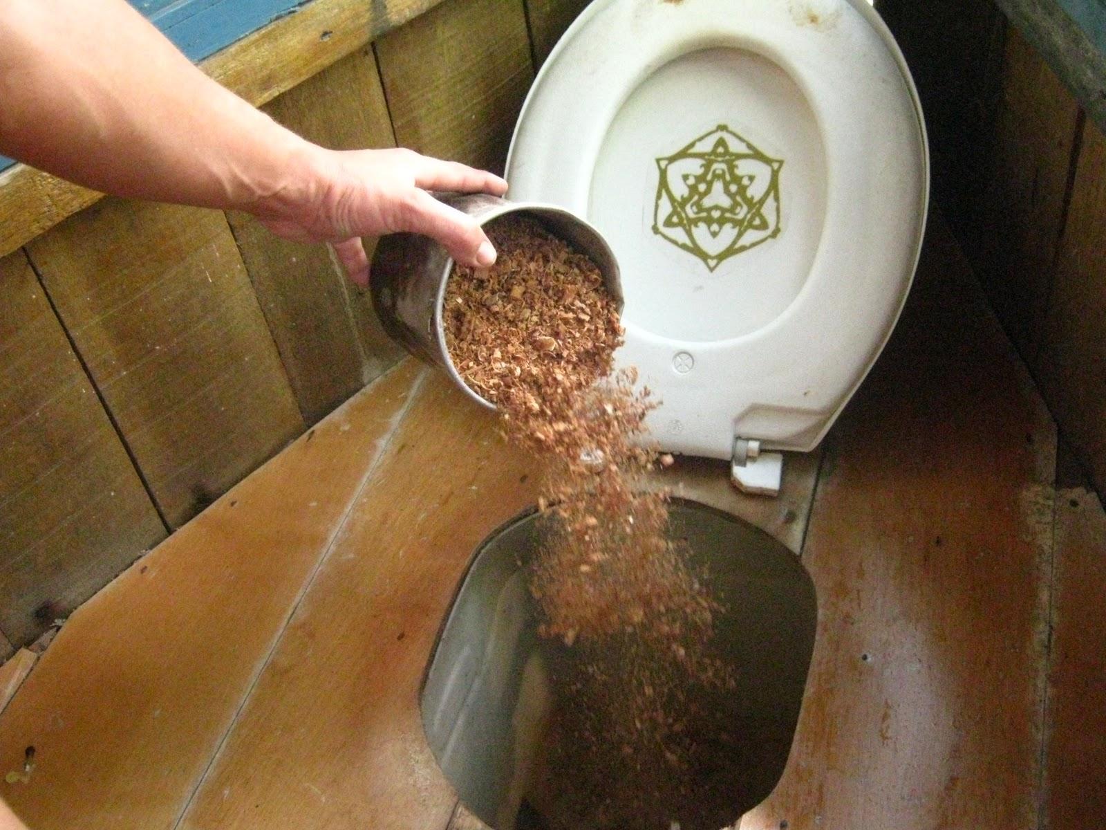 Compostagem ou desidratação para higienização dos dejetos humanos #684826 1600 1200