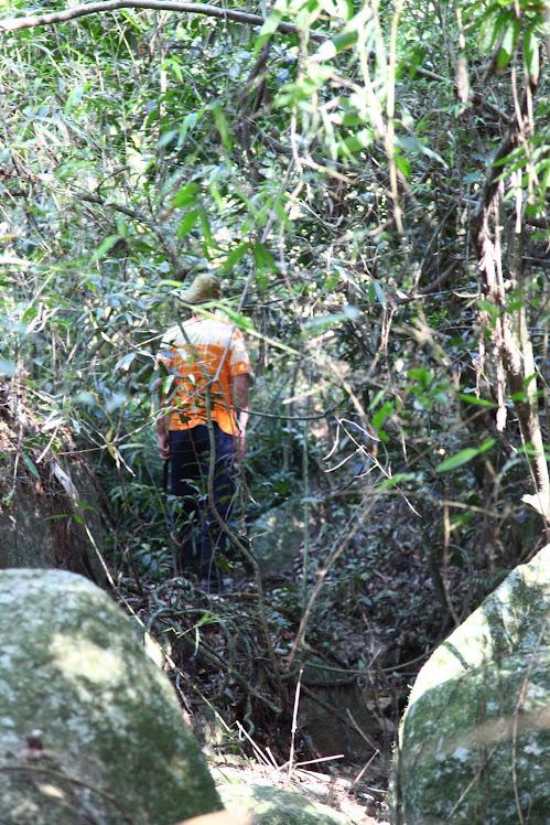 Cores da Coxilha. Cortesia de www.grassiproducoes.com.br Fotógrafo Erio Grassi