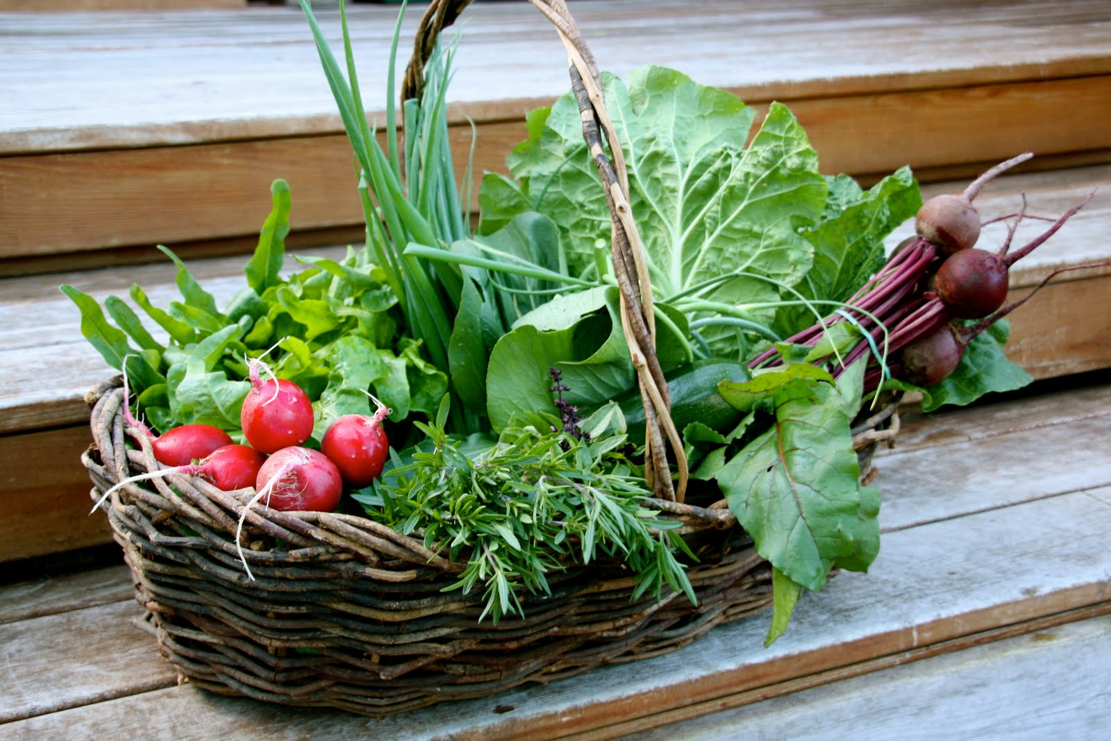 how to produce organic vegetables