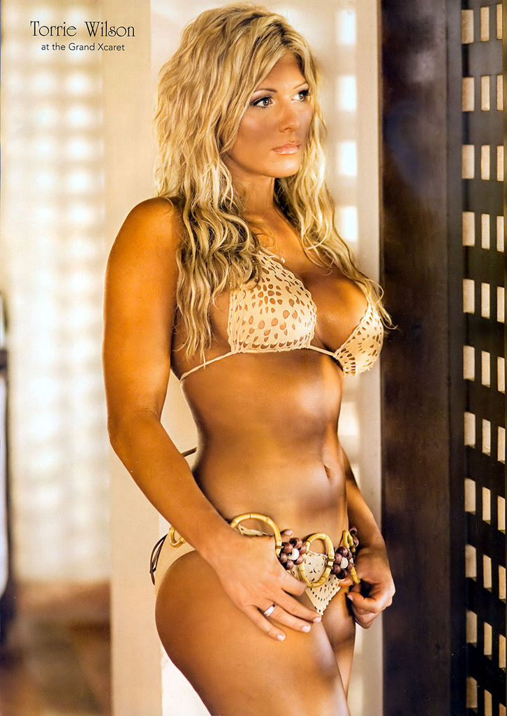 Torrie Wilson hot picture