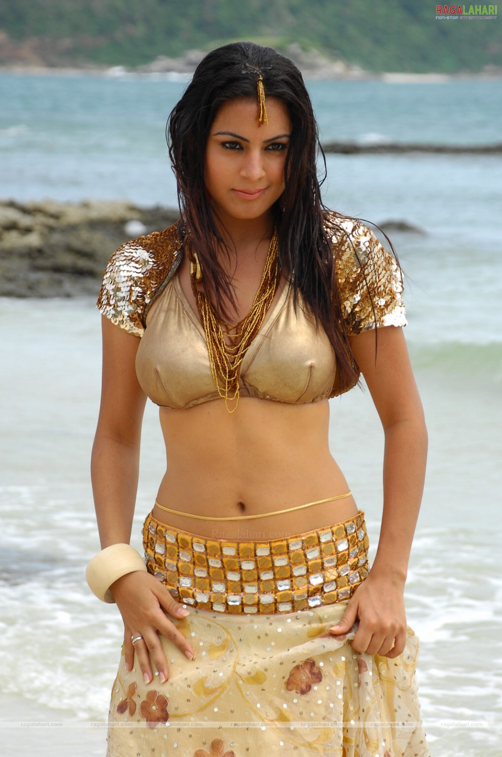 Shraddha Arya hot picture