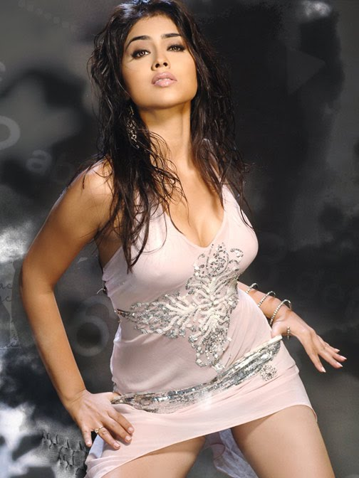 Shreya Saran hot picture