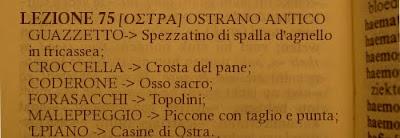 Ostra,dialetto,lezione 75