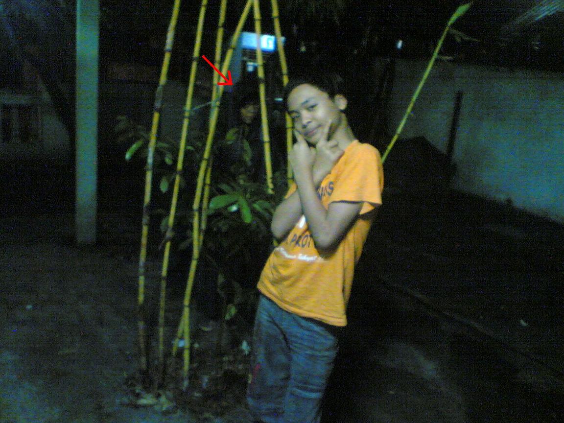 Penampakan Kolor Ijo di Pohon BAMBU KUNING