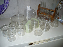 Labware and Glassware