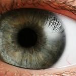 [eye_iris-150x150.jpg]