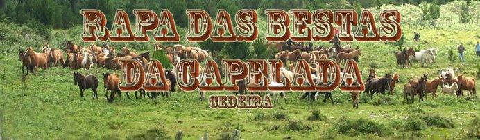 Rapa das bestas da Capelada