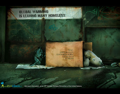 homeless polar bear
