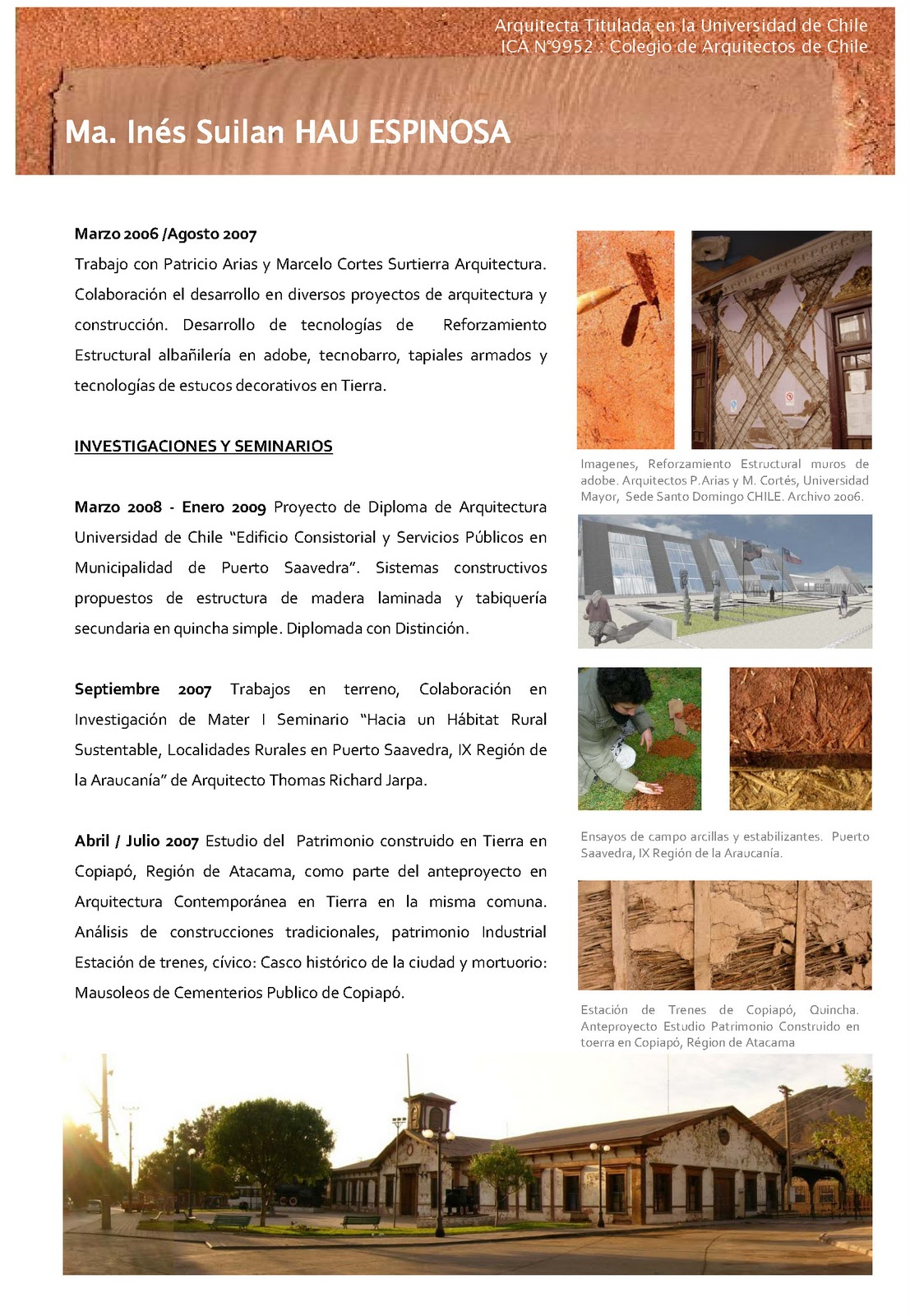 curriculum vitae 2011 | Patrimonio y Arquitectura de Tierra - CHILE