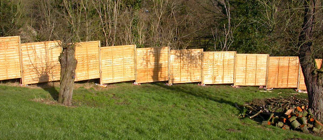 Unpainted panel fencing.