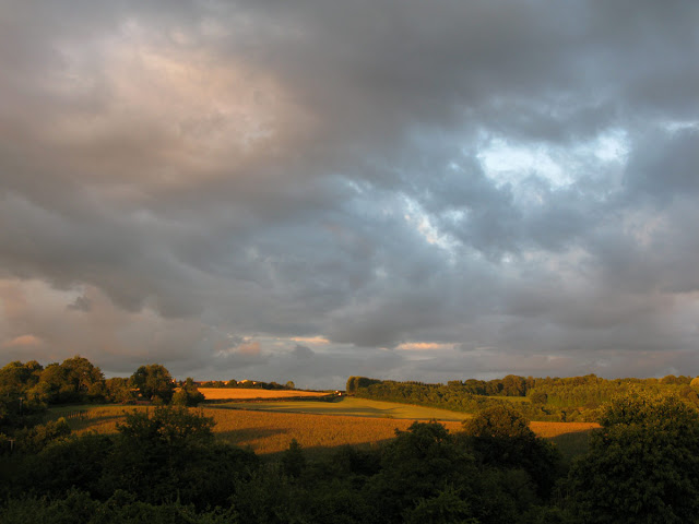 August evening view across Shropshire fields.