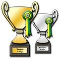 Trofeo del campeón y subcampeón de la Copa ProFurgol