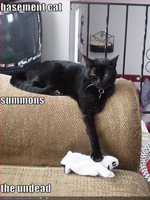 siskoid 39 s blog of geekery cat of the halloweek 85 basement cat