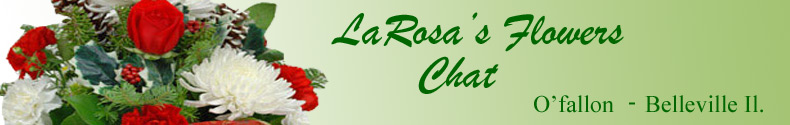 LaRosas Flower Chat
