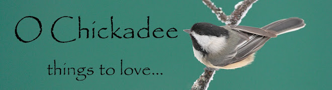 O Chickadee