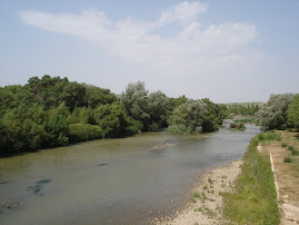 LODOSA (Navarra)