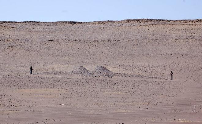 Ave del Geoglifo de Paracas.