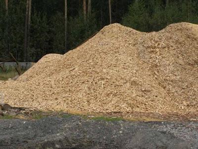 Лада Калина на биотопливе