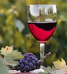 As três fases do Vinho