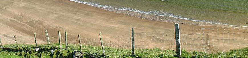header-photo