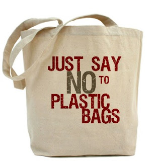 short essay on say no to plastic bags