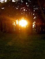 I ♥ Sunsets