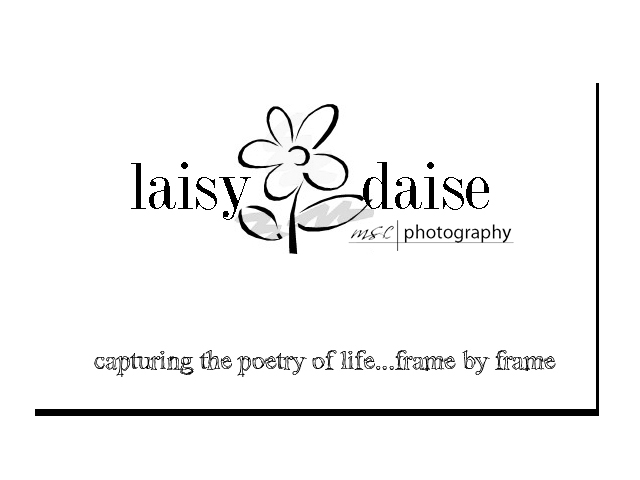 laisy daise photography