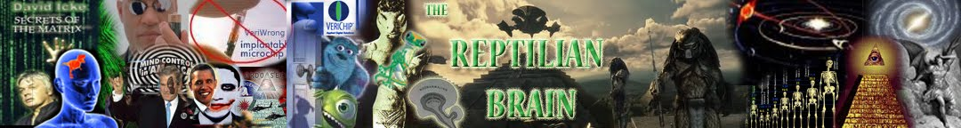 THE REPTILIAN BRAIN (Secret of the Matrix)