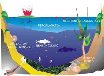 Komponen Ekosistem Edukasi