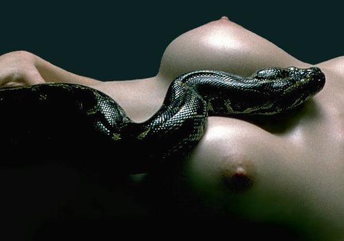 [sensual120.jpg]