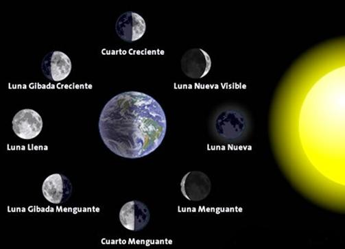 Universo: Las Fases de la Luna observadas desde nuestro Planeta Tierra