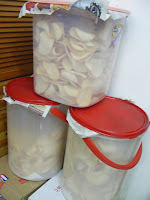 brunei Prawn Crackers