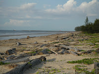 Muara Beach in brunei