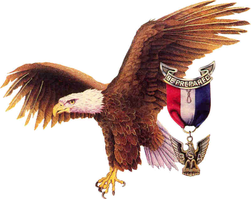 MY READER'S BLOCK: Eagle Scout!!