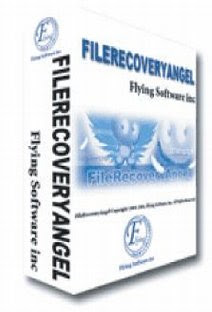 Download File Recovery Angel 1.13 Full Version