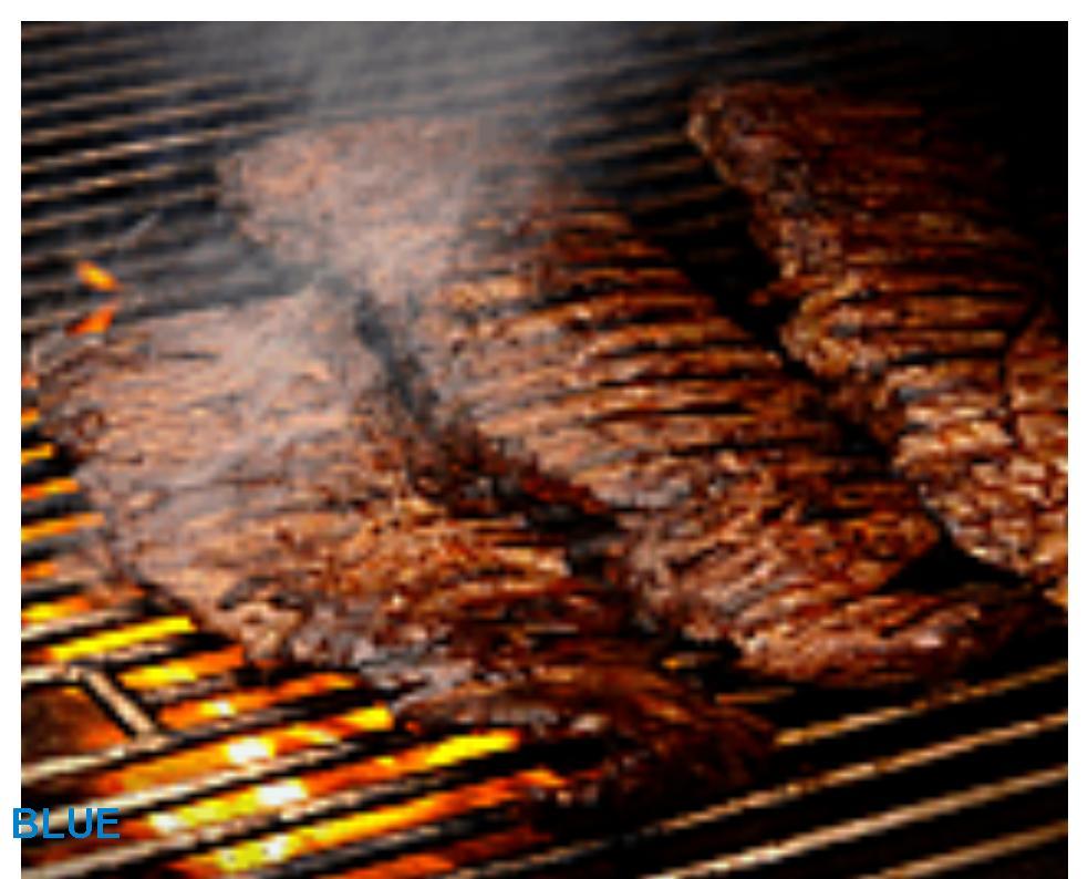 Tips c mo regular el calor de una parrilla - Parrillas para asar carne ...