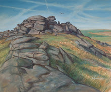 Kestrel Hunting over Kilmar Tor
