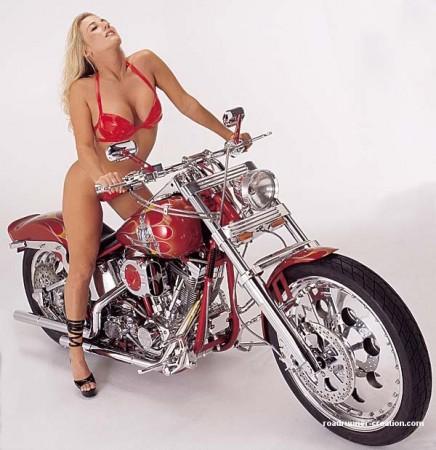 Harley Davidson 2010 Fat Bob. 2009 HARLEY DAVIDSON DYNA
