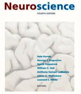 Neuroscience university guides