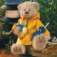 teddy bear in rain coat