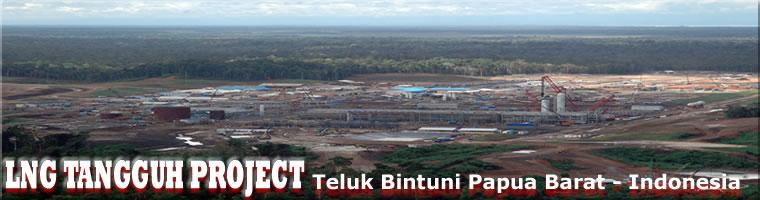 Bambang Suharto