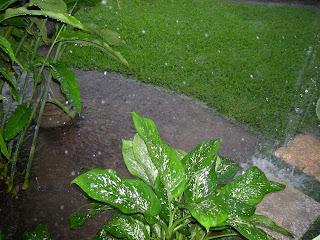 rain, La Ceiba, Honduras