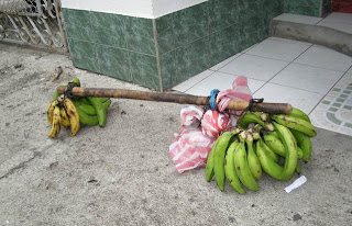 bananas for sale, La Ceiba, Honduras